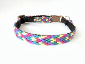 friendship bracelet cat collar